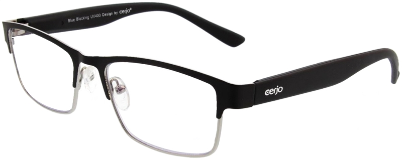 Reading glasses metal 2.00 BB