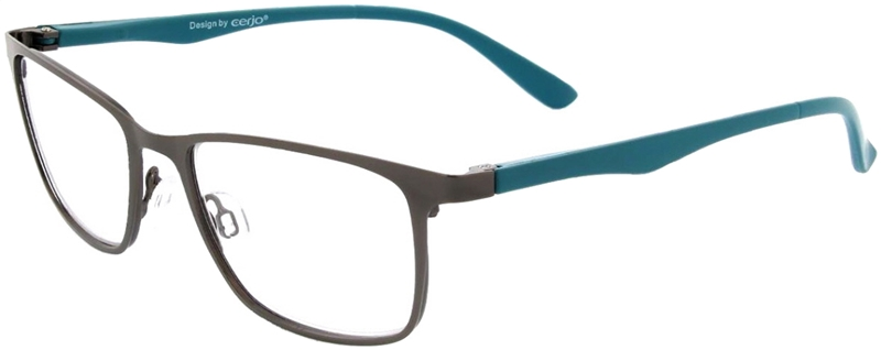 015.581 Reading glasses metal 1.00