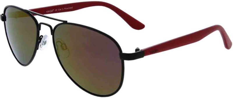 223.092 Sunglasses polarized pilot