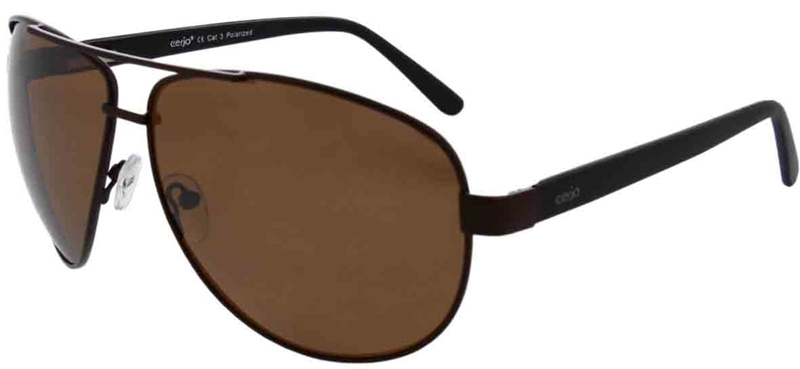 223.201 Sunglasses polarized pilot