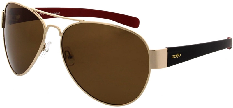 223.871 Sunglasses polarized pilot