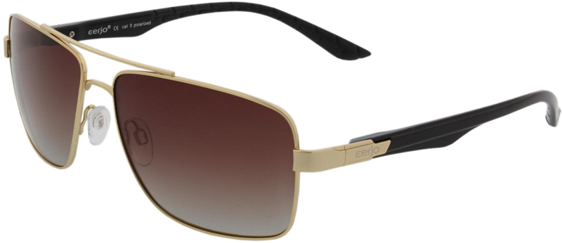 223.891 Sunglasses polarized pilot