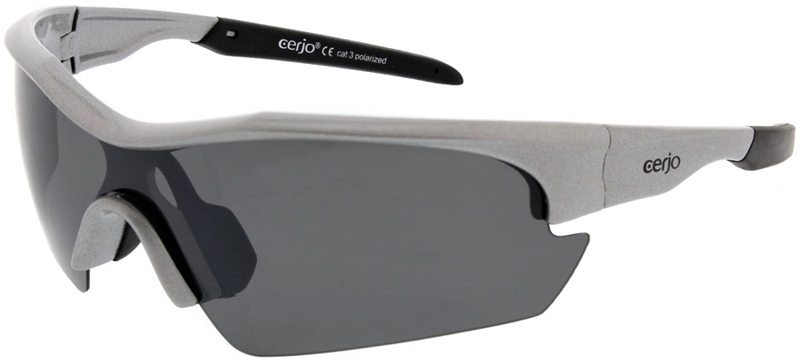 260.231 Sunglasses polarized junior