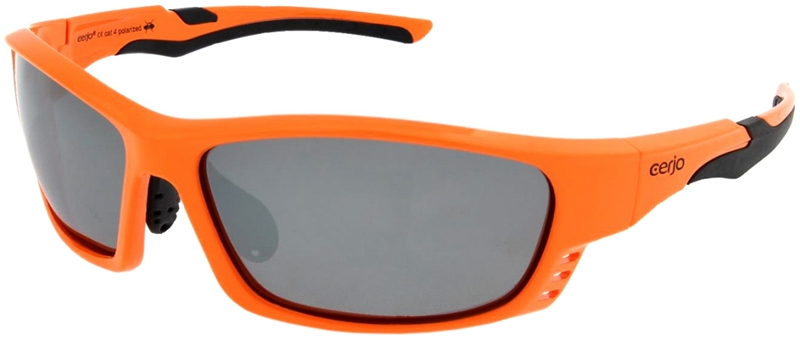 264.321 Sunglasses polarized