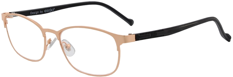 015.381 Reading glasses metal 1.00