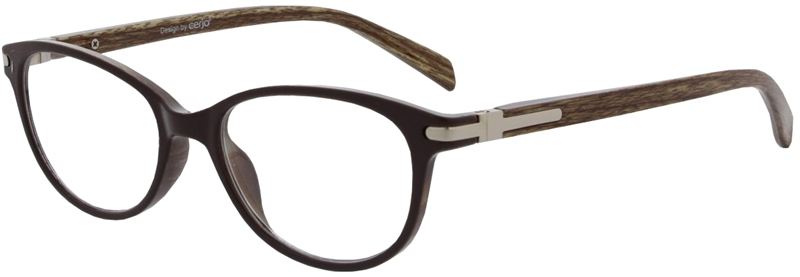 016.701 Reading glasses plastic 1.00