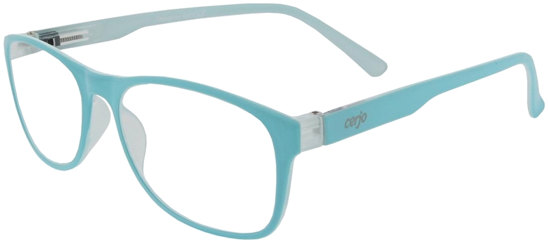 016.891 Reading glasses plastic 1.00