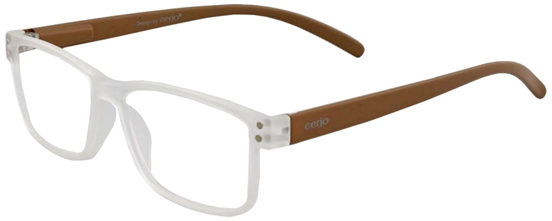 016.981 Reading glasses plastic 1.00