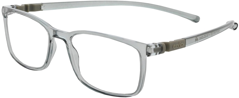 116.071 Reading glasses plastic 1.00