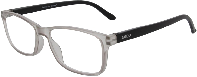 116.511 Reading glasses plastic 1.00