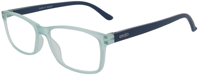 116.571 Reading glasses plastic 1.00