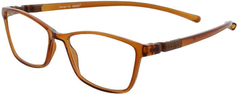 116.601 Reading glasses plastic 1.00
