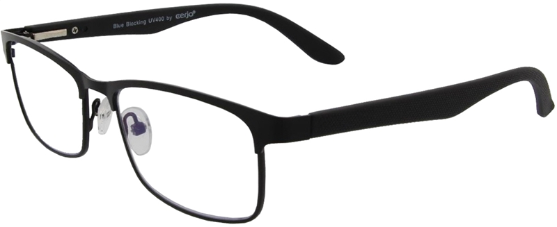 215.001 Reading glasses metal 1.00 BB