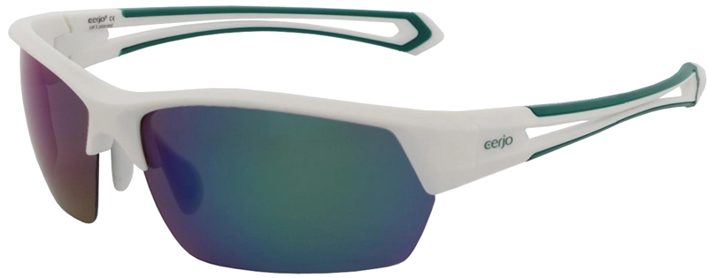 267.212 Sunglasses polarized