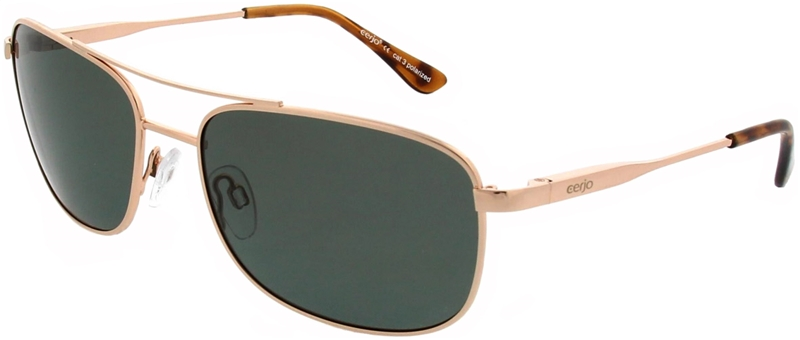 223.541 Sunglasses polarized pilot