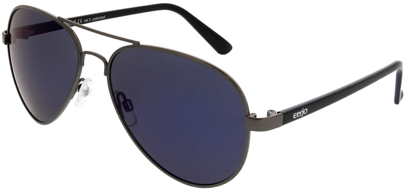 223.631 Sunglasses polarized pilot
