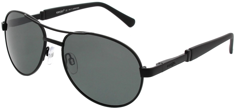 223.701 Sunglasses polarized pilot