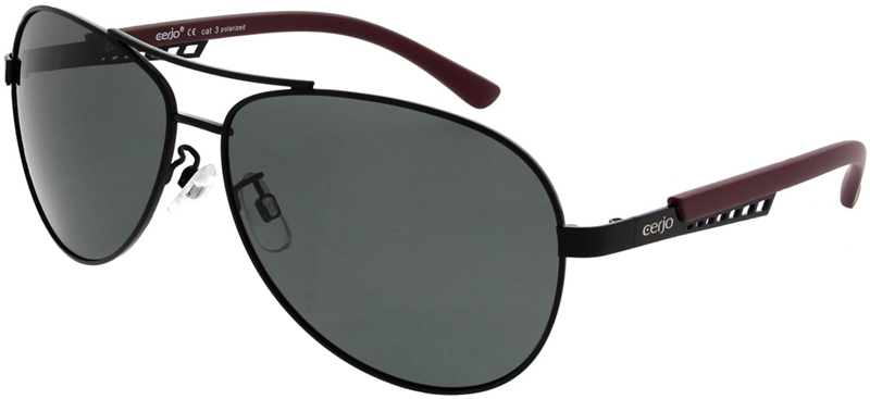 223.731 Sunglasses polarized pilot