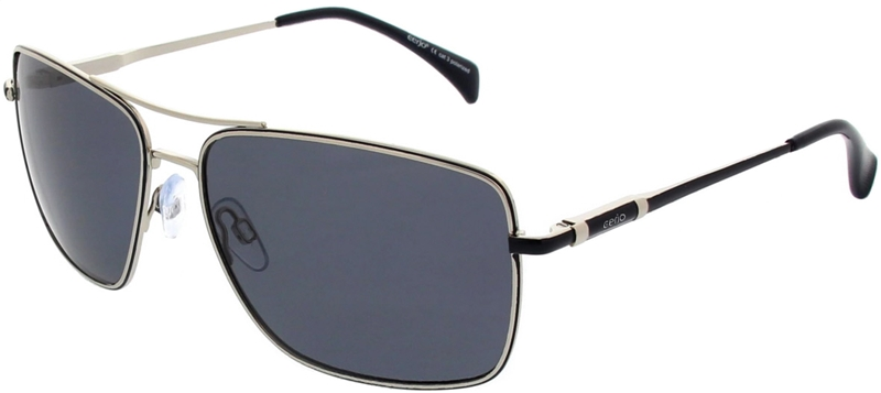 223.791 Sunglasses polarized pilot