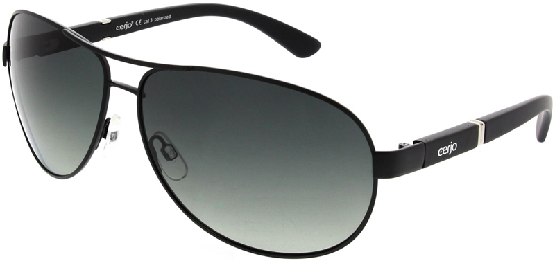 223.801 Sunglasses polarized pilot