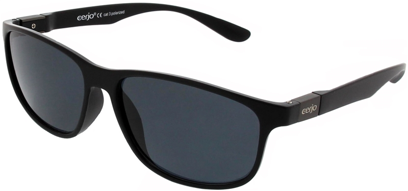 252.641 Sunglasses polarized plastic unisex
