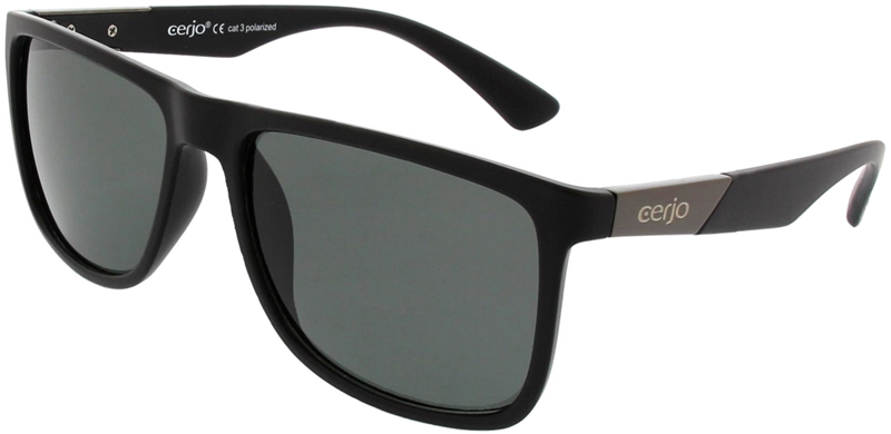 252.891 Sunglasses polarized plastic unisex