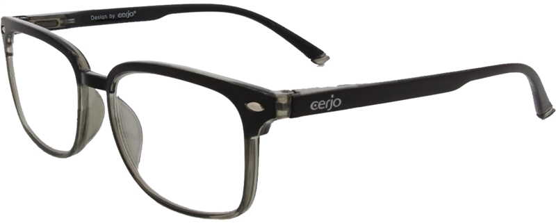 016.741 Reading glasses plastic 1.00