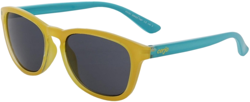 080.212 Sunglasses SWISS HD junior