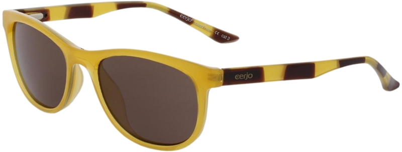 080.291 Sunglasses SWISS HD junior