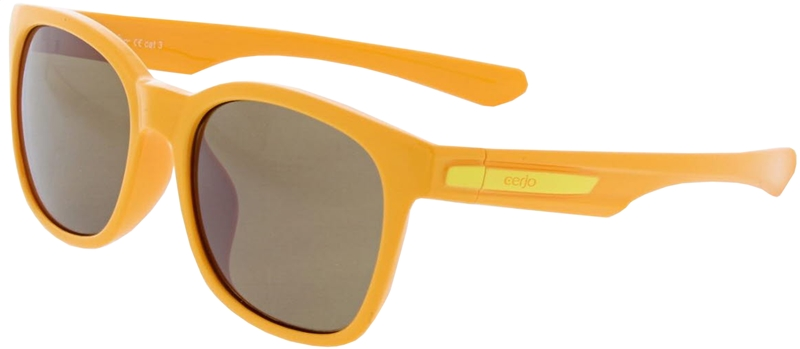 080.701 Sunglasses SWISS HD sport junior