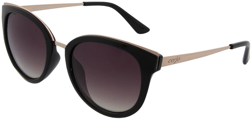 081.061 Sunglasses SWISS HD