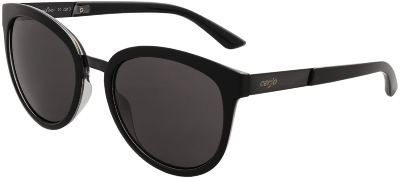 085.111 Sunglasses SWISS HD