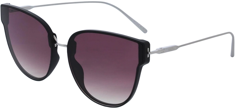 085.201 Sunglasses SWISS HD