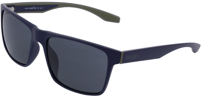 086.181 Sunglasses SWISS HD
