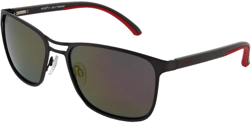 229.621 Sunglasses polarized