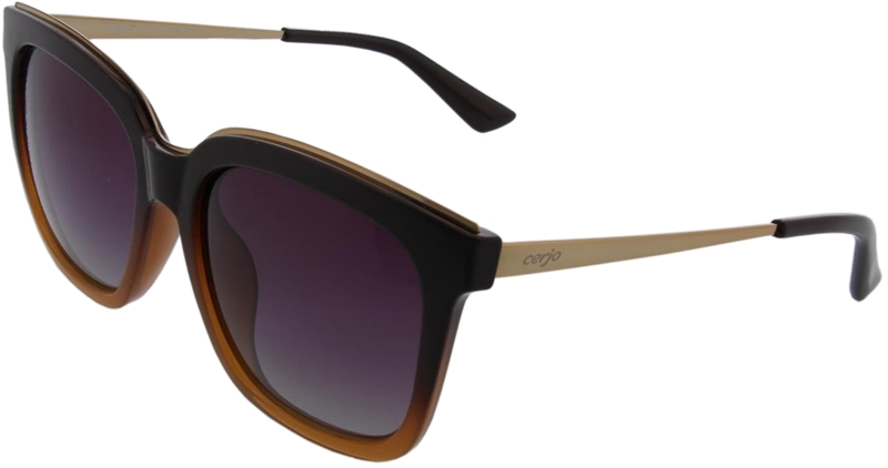 240.391 Sunglasses polarized