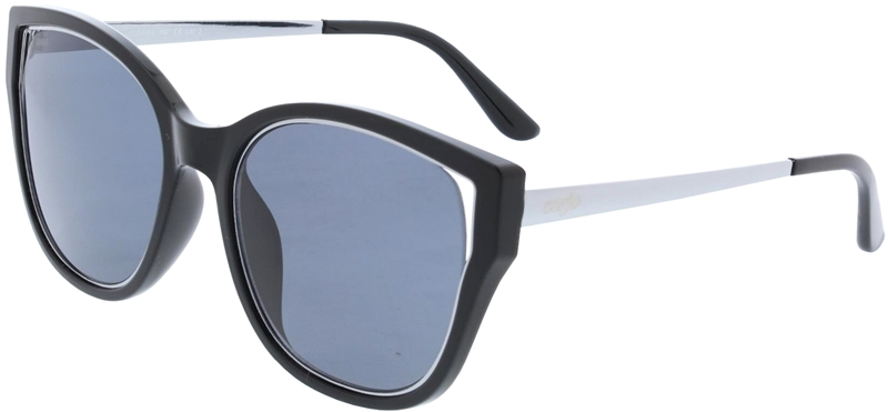 085.242 Sunglasses SWISS HD
