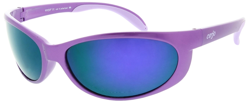263.073 Sunglasses polarized