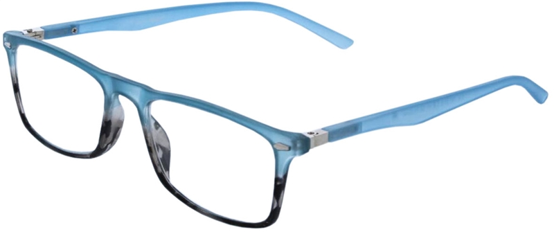 116.191 Reading glasses 1.00