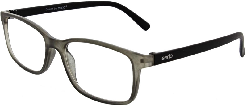 116.331 Reading glasses 1.00