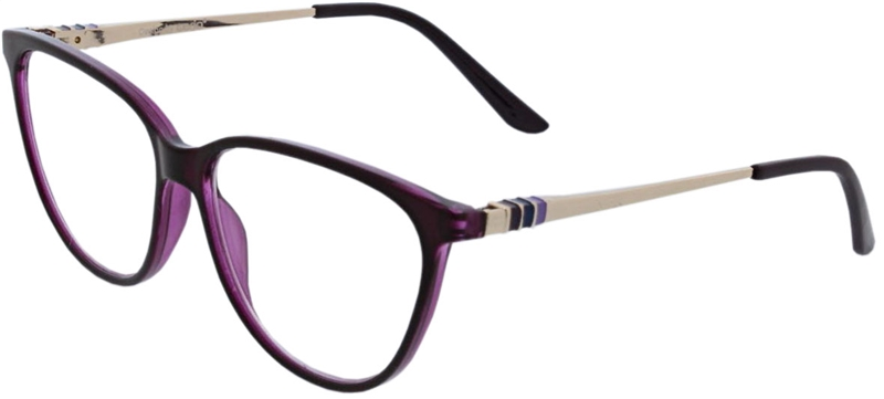 116.611 Reading glasses 1.00