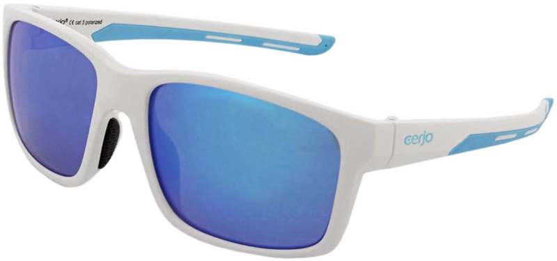 264.451 Sunglasses polarized