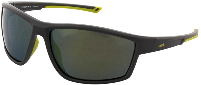 264.561 Sunglasses polarized
