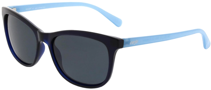 240.002 Sunglasses polarized