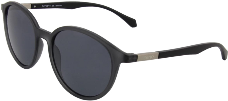 252.101 Sunglasses polarized