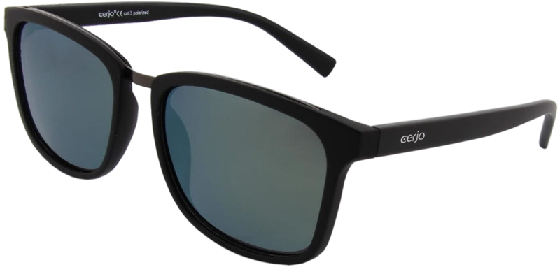 252.081 Sunglasses polarized