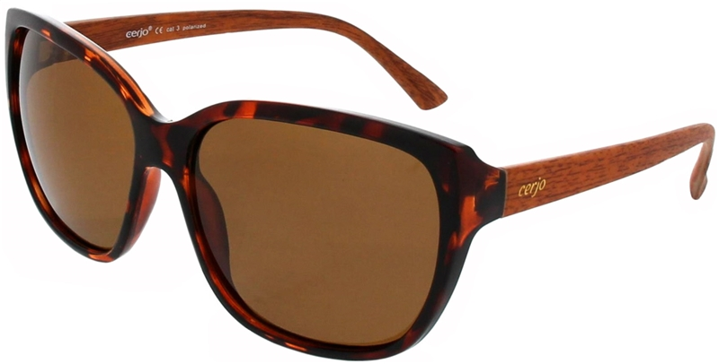 240.261 Sunglasses polarized