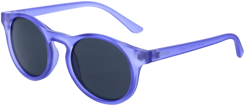 018.321 Sunglasses junior