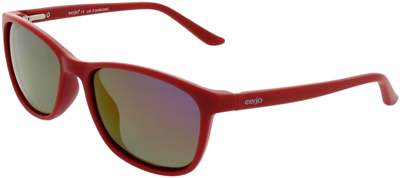 218.281 Sunglasses polarized junior