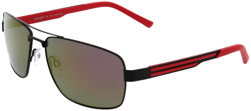 223.902 Sunglasses polarized